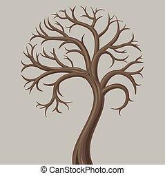 à feuilles caduques, coffre, bas, arbre