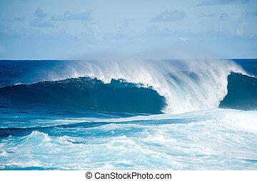 á-hang, óceánok, sziget, kanári, fajana, barlevento, palma,...