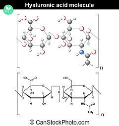 ácido, molécula, hyaluronic