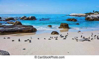 áfrica, costa atlântica