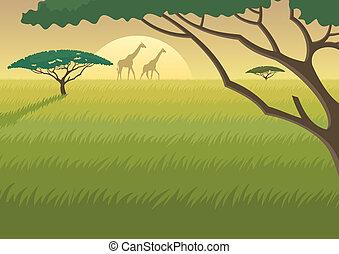 áfrica, paisaje