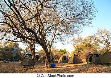áfrica, parque nacional, acampamento