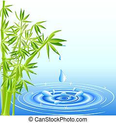 água, bambu, gotas, folhas, queda