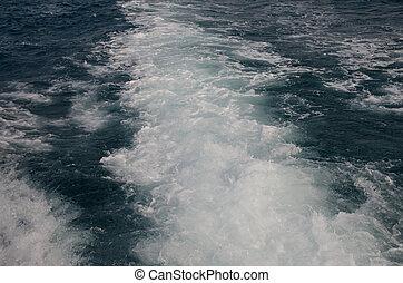 água, costas, de, bote