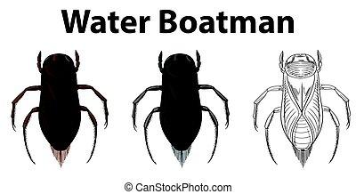 água, doodle, personagem, barqueiro