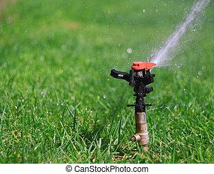 água, gramado, jardim, irrigador