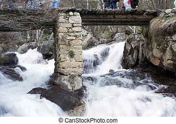 água, ponte, sobre, incomodado