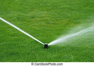 água, pulverização, irrigador gramado