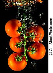 água, queda, tomates