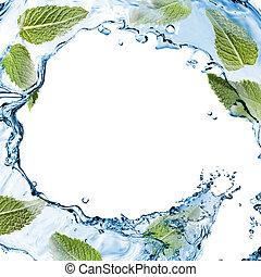 água, respingo, com, verde, hortelã, isolado, branco