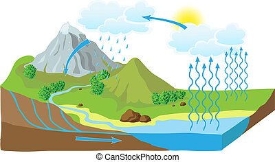 água, schema, vetorial, ciclo, natureza