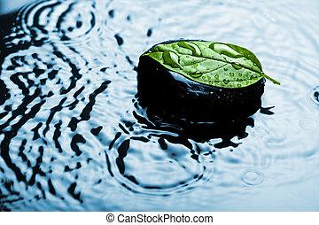 água, spa, pedra, folha