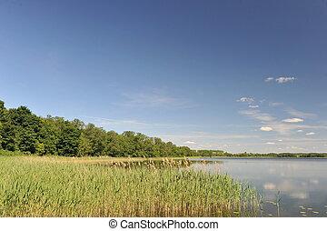 água tranqüila, de, lago