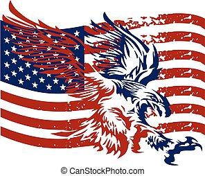 águia, afligido, americano