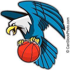 águia, agarramento, basquetebol, calvo, voando