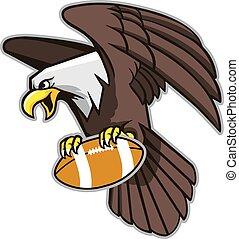 águia, agarramento, futebol, calvo, voando