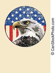 águia, americano, calvo, bandeira