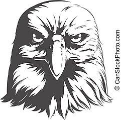 águia, cabeça, silueta, -, vetorial, vista dianteira