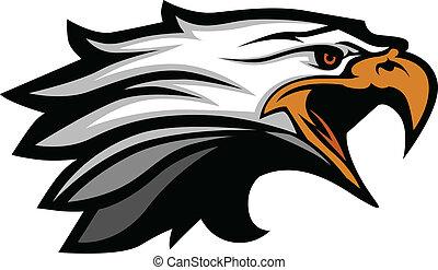 águia, cabeça, vetorial, illu, mascote