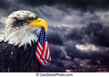águia calva, segura, bico, bandeira estados unida