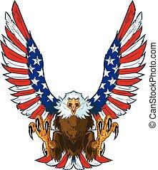águia, com, bandeira americana, asas