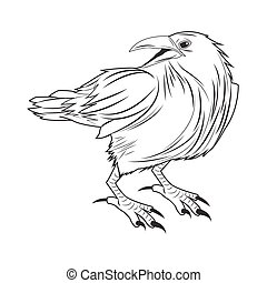 águia, desenho, animal, tatuagem