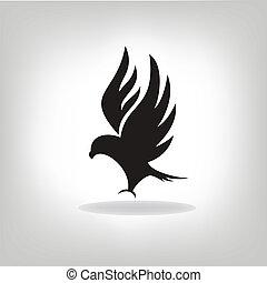águia, expandido, pretas, asas