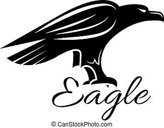 águia, heraldic, pássaro preto, ícone