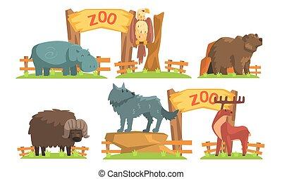 águia, ilustração, urso, bisonte, animais, veado, hipopótamo, lobo, jogo, vetorial
