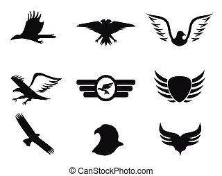 águia, jogo, pretas, ícones