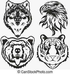 águia, jogo, urso, tiger, vetorial, lobo, logotipo
