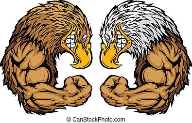 águia, mascotes, flexionar, caricatura, braços