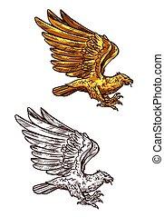 águia, ouro, heraldic, ou, falcão, falcão, pássaro