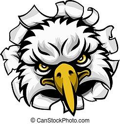 águia, rosto, através, fundo, rasgando, mascote