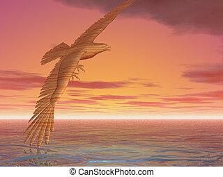 águia, torneado