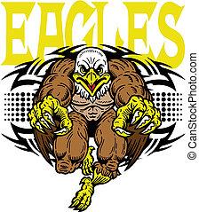 águia, tribal, desenho