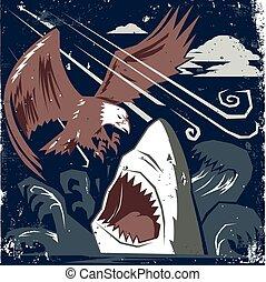 águia, tubarão, vs