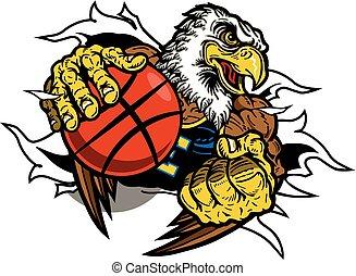 águila, baloncesto
