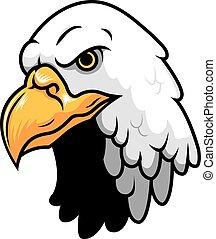 águila, cabeza, calvo