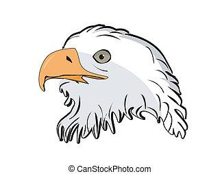 águila, cabeza, vector, ilustración