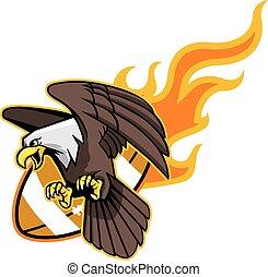 águila, footb, vuelo, calvo, llameante