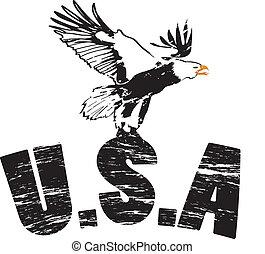 águila, grunge, ilustración, estados unidos de américa