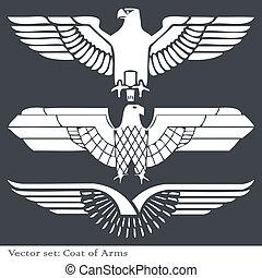 águila, heráldico, brazos, chamarra