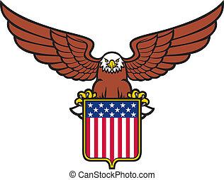 águila, norteamericano, (usa, shield)