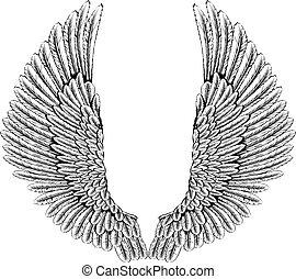 águila, o, alas ángel