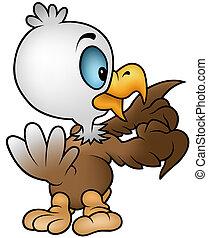 águila, poco, calvo