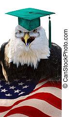 águila, student.
