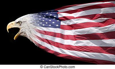 águila, y, bandera