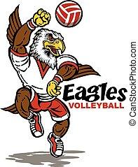 águilas, voleibol
