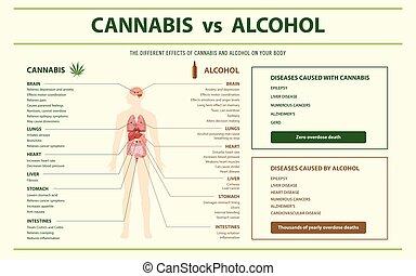 álcool, cannabis, infographic, horizontais, vs